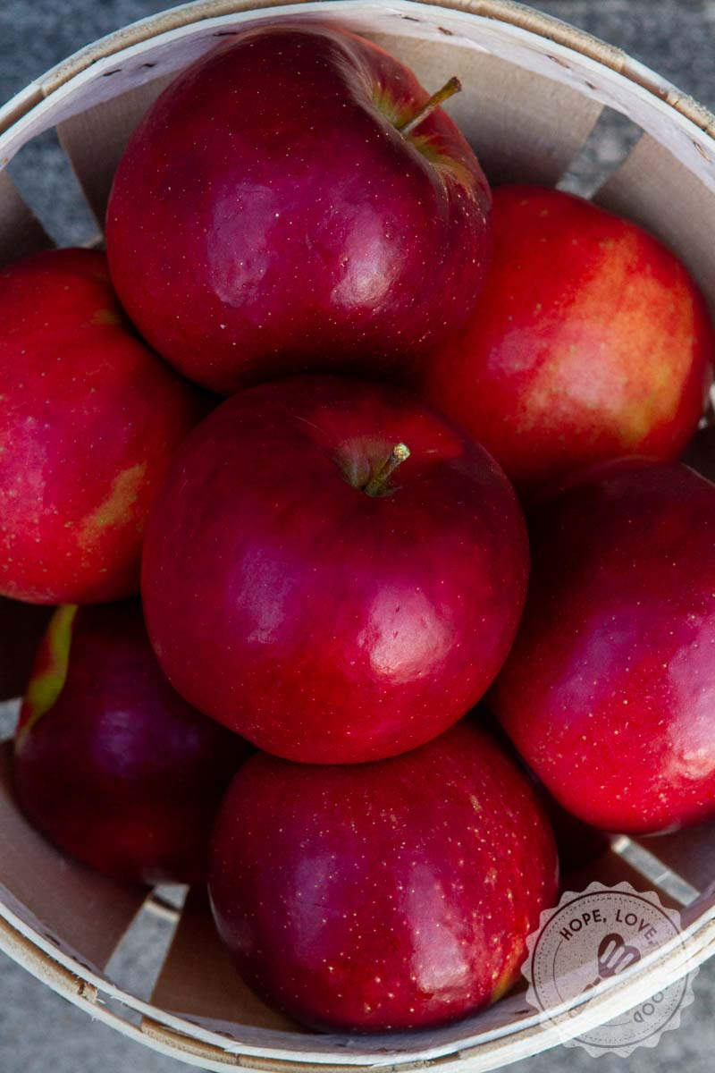 Best Tips for Apple Picking with Your Family